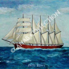 David Dows #14