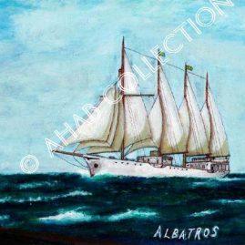 Albatros #89